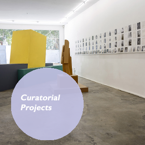 Shahram Entekhabi, curatorial Projects